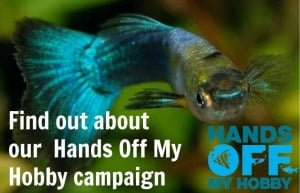 Find out about our Hands Off My Hobby campaign